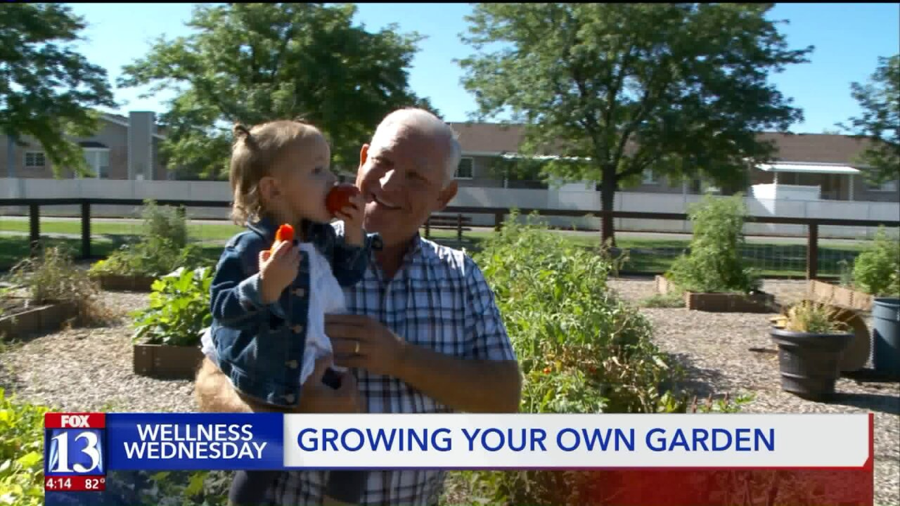 Wellness Wednesday: Growing your own garden for better health
