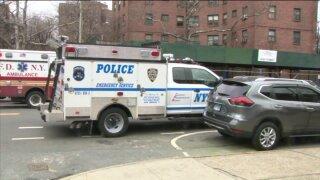 Bronx homicide 2020