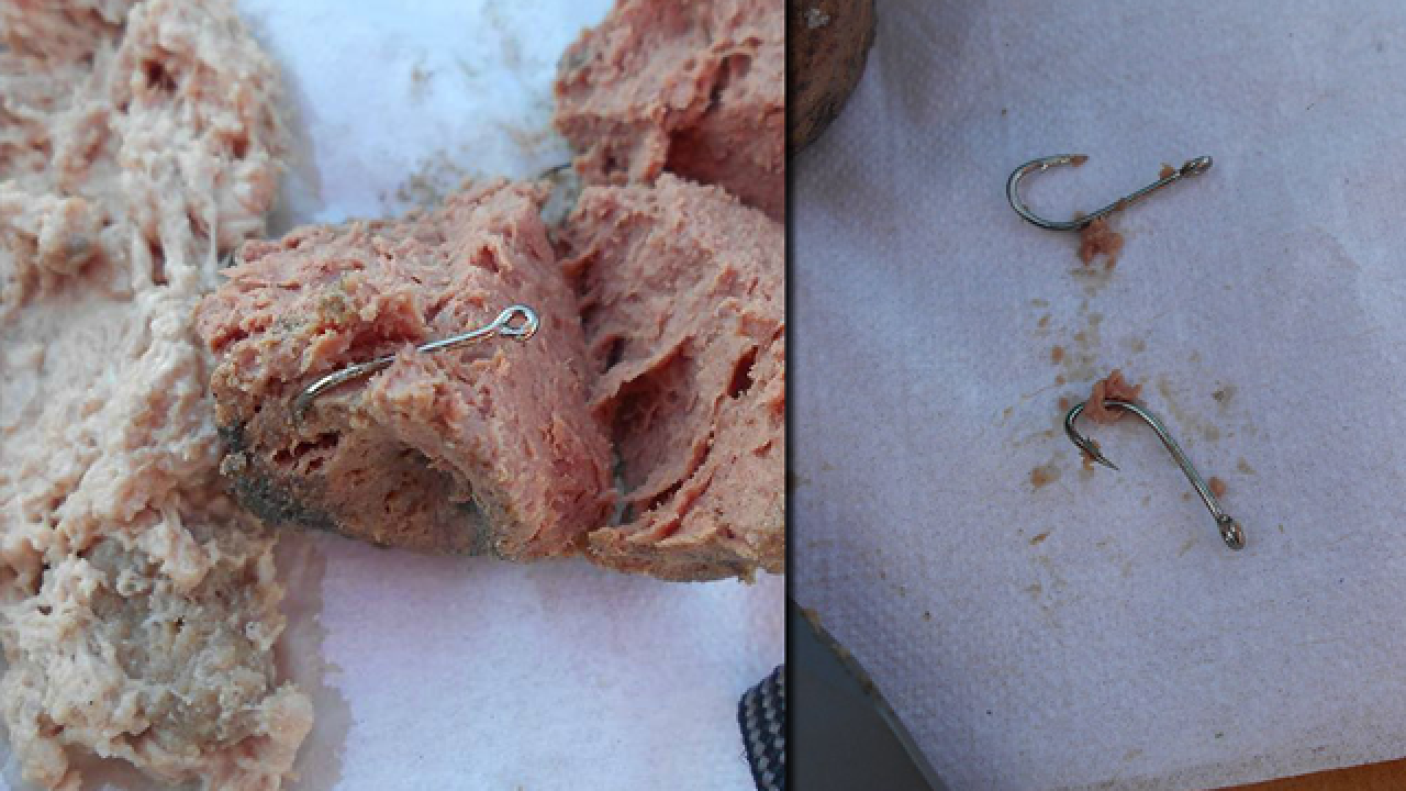 Fish hooks found in meat at Florida dog park