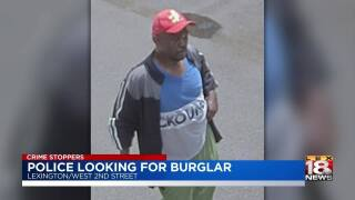 Police looking for burglar