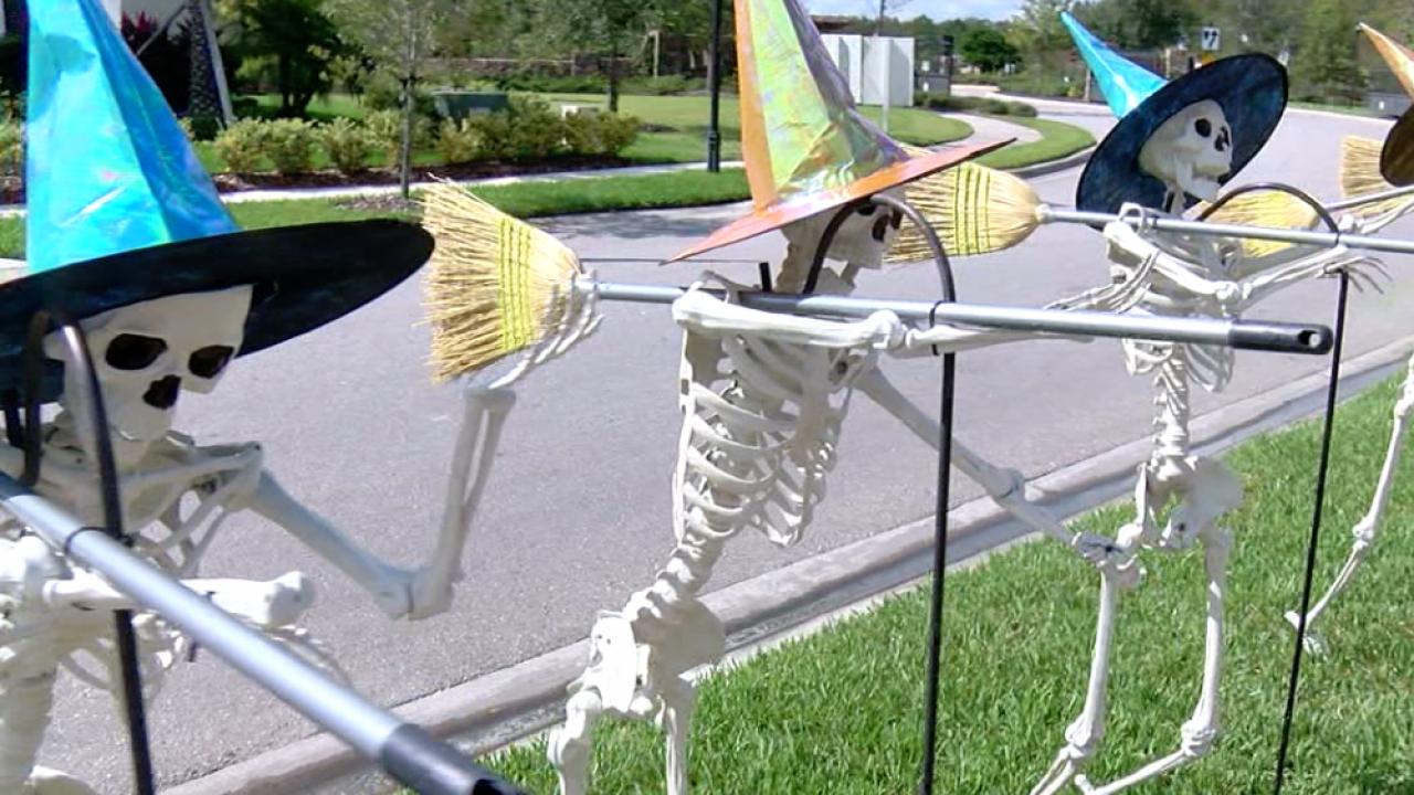 Wesley Chapel skeletons