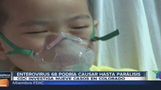 10 menores de Colorado con síntomas de parálisis por Enterovirus 68