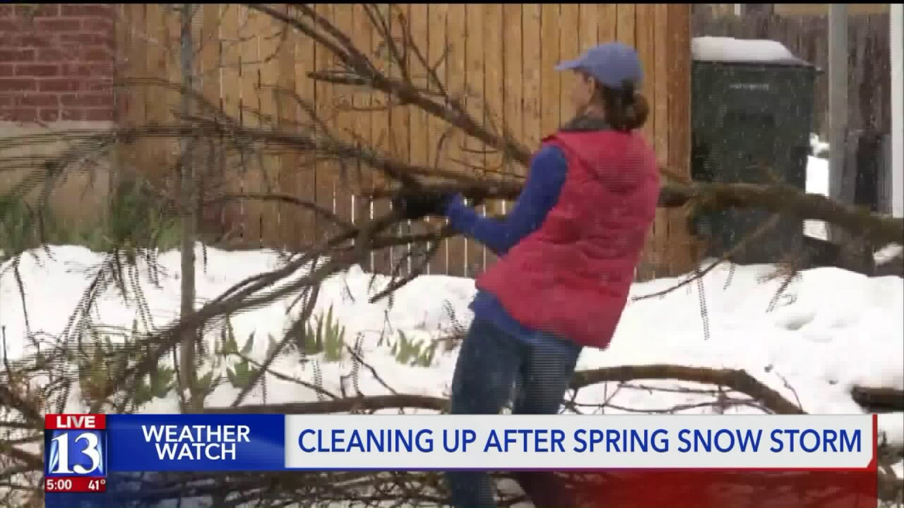 Cities begin cleanup from winter storm