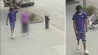 Suspect in custody after 92-year-old woman shoved, hit head on fire hydrant in New York