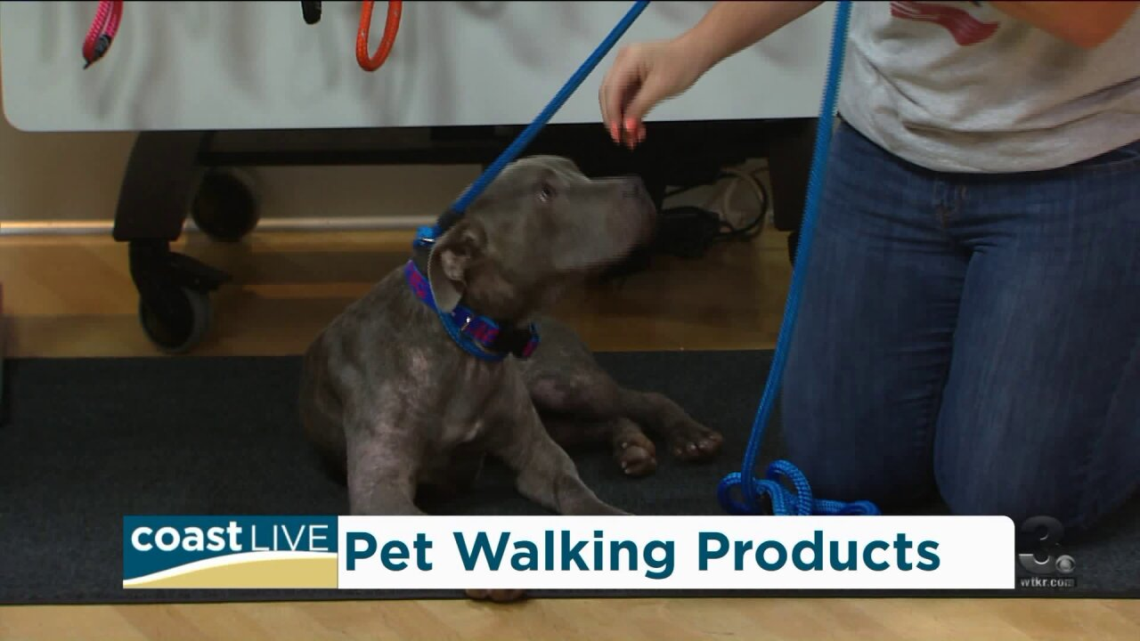 There is a better way to walk your dog – or cat – on CoastLive