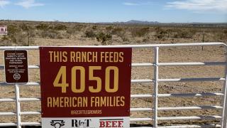 Ladd ranch