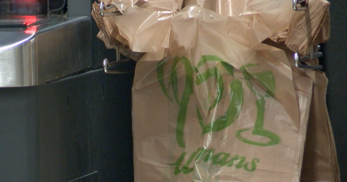 Plastic bag ban comes with a hefty fine if stores violate new single-use law