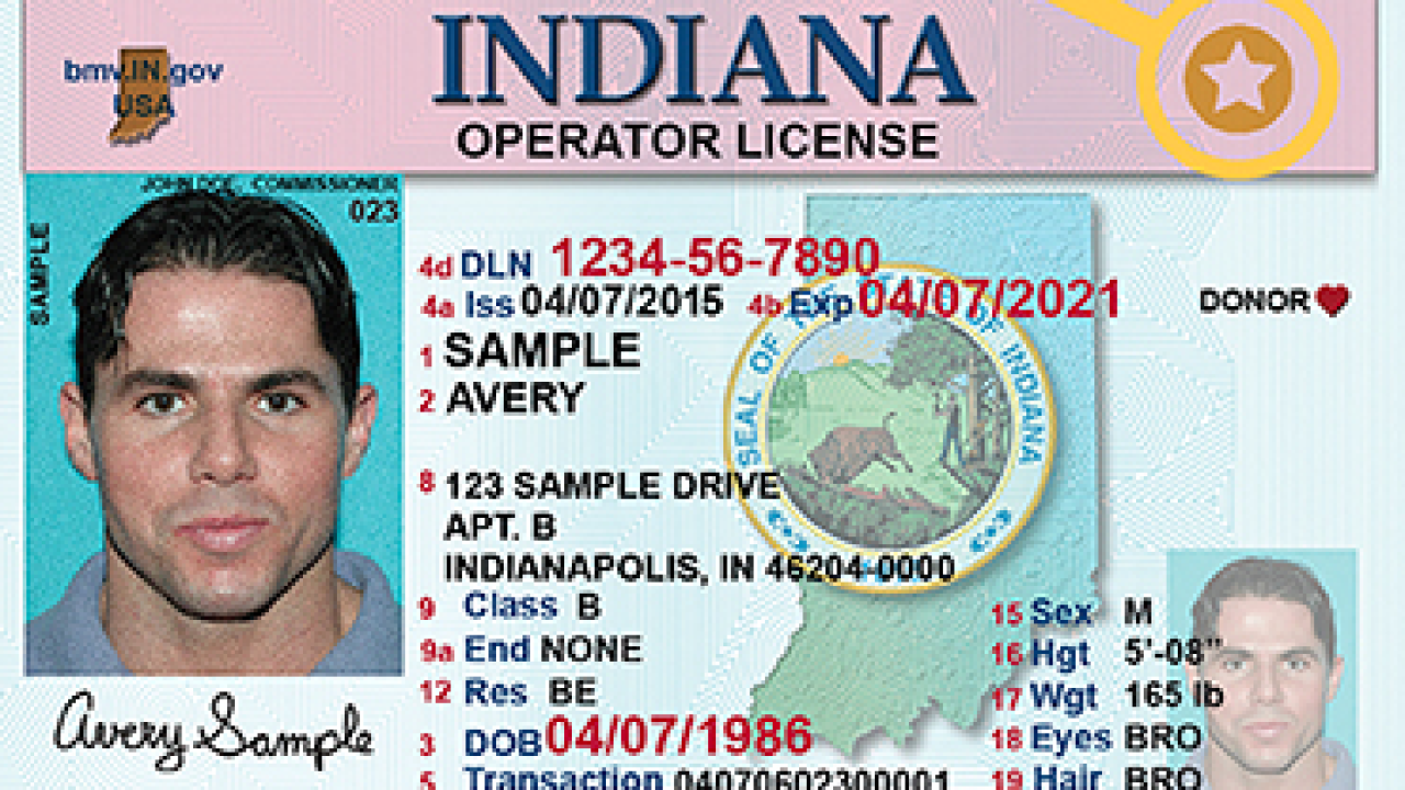 Indiana license sample