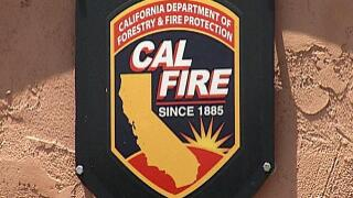 Cal Fire reports firefighter injured by falling tree
