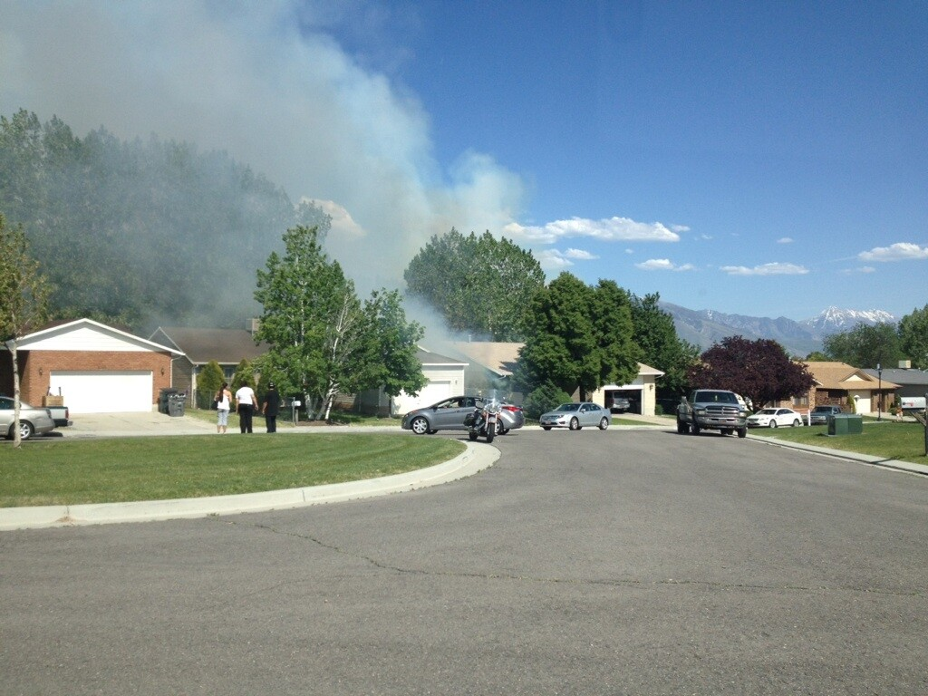 Photos: Investigators: Man burning cottonwood pods caused S. Jordan fire
