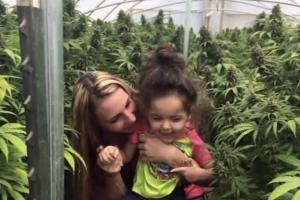 Cannabis medication pediatrics organization