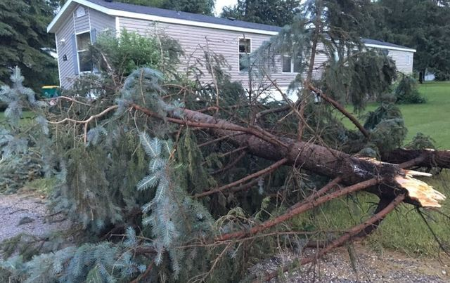 GALLERY: Storms wreak havoc across Wisconsin