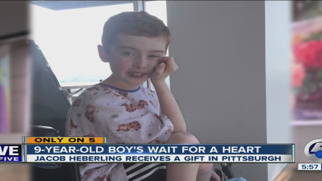 9-year-old recovering from heart transplant