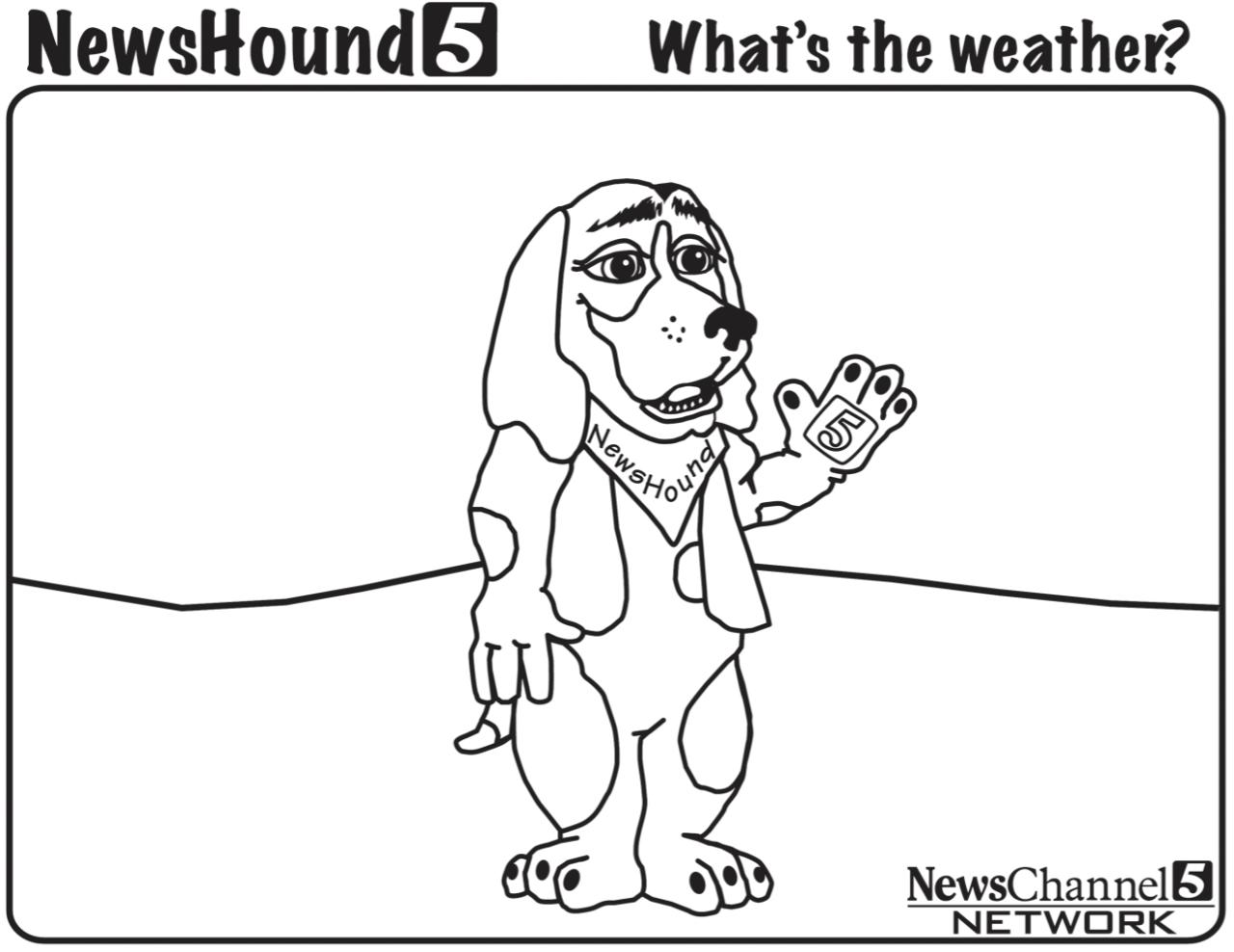 Newshound 1