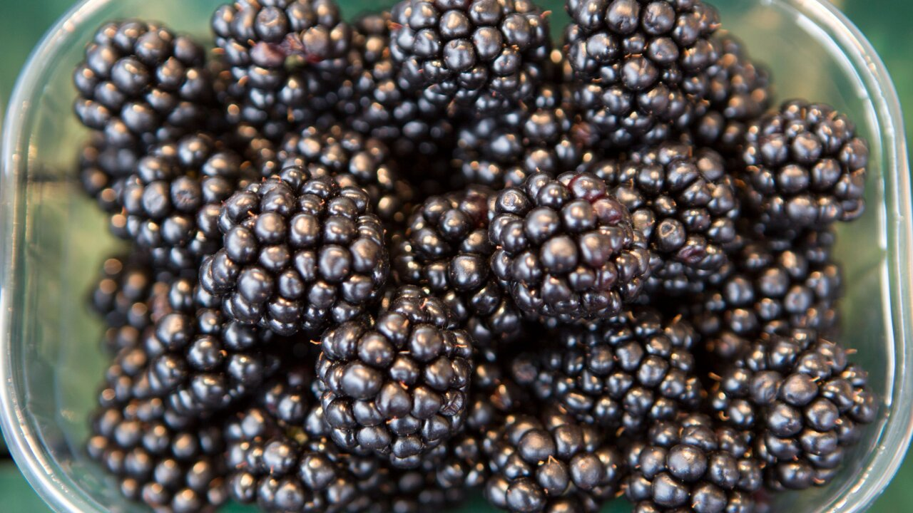 Hepatitis A outbreak tied to berries sold in Michigan spreads to 1 more state