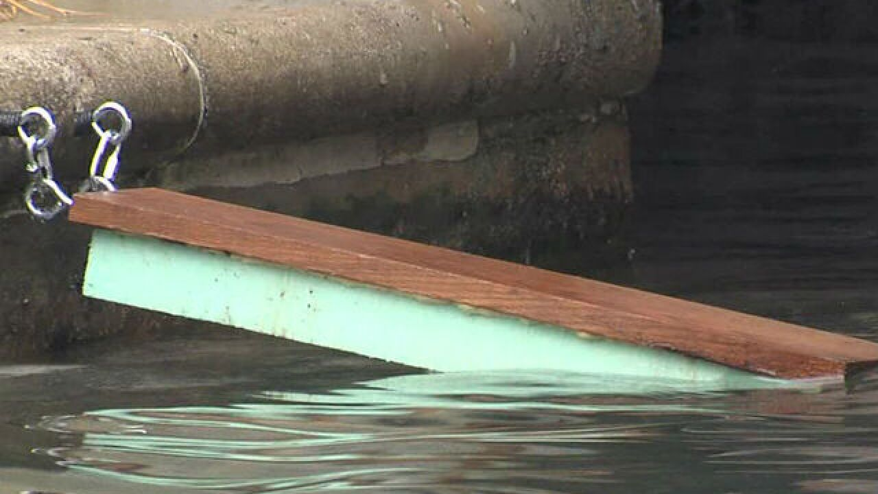 City installs ramps to keep ducklings alive