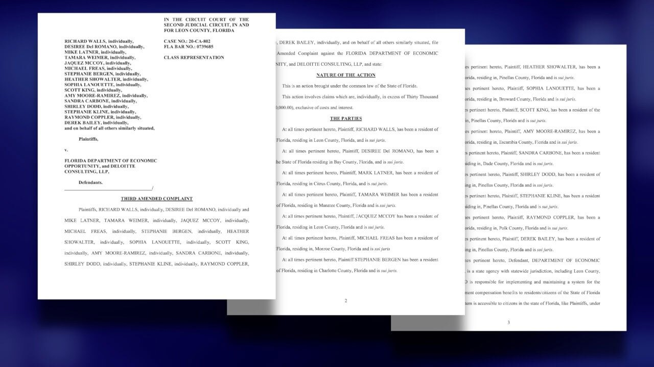 Revised-lawsuit-against-DEO,-Deloitte-being-considered-by-judge-WFTS.jpg