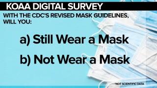 SURVEY Masks Again Again FSG.jpg