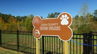 Bradfordville Dog Park to close June 17 for improvements, reopens June 18