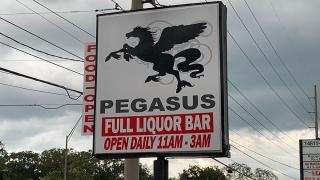 pegasus-lounge.png
