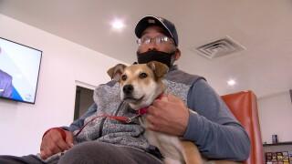 VIF SERVICE DOG CERTIFCATION.jpg