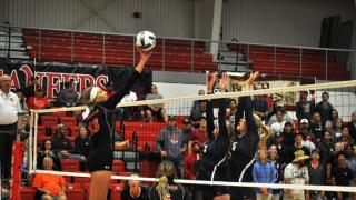 Dawson CC Volleyball
