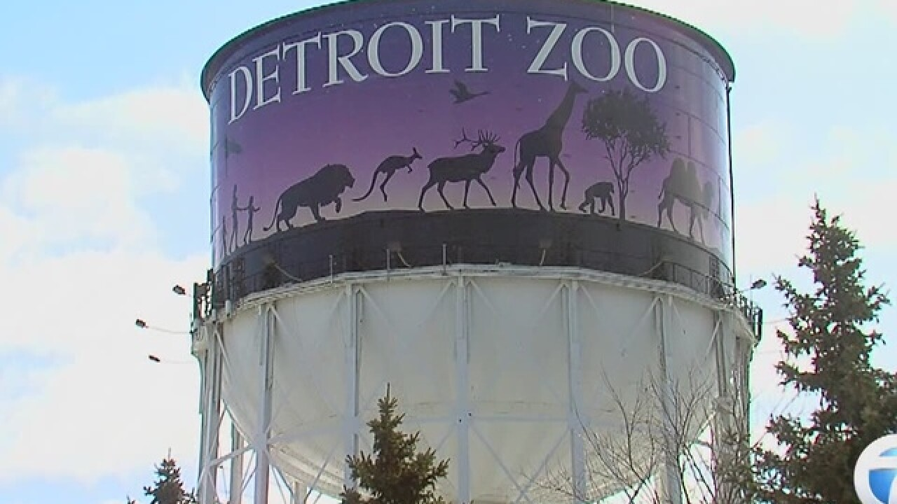 Detroit Zoo's annual holiday light display