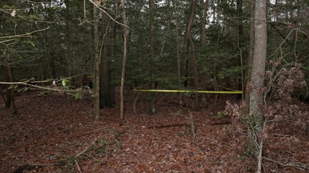 York-Poquoson deputies respond to reports of human skeletal remains found in woodedarea