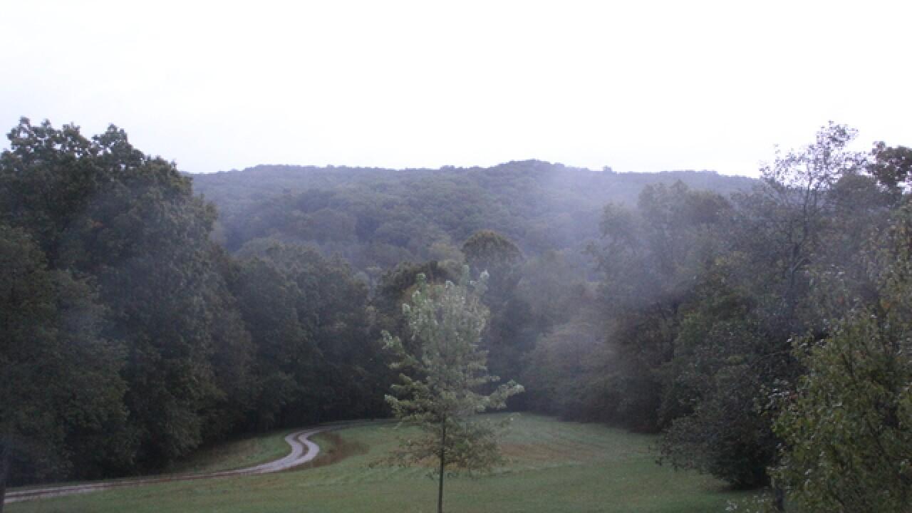 PHOTOS: Re-live fall through Brown Co. Leaf Cam