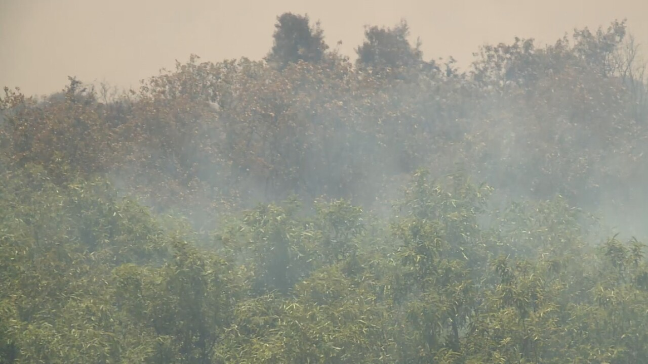 A brush fire burns in Palm Beach Gardens on May 25, 2021.jpg