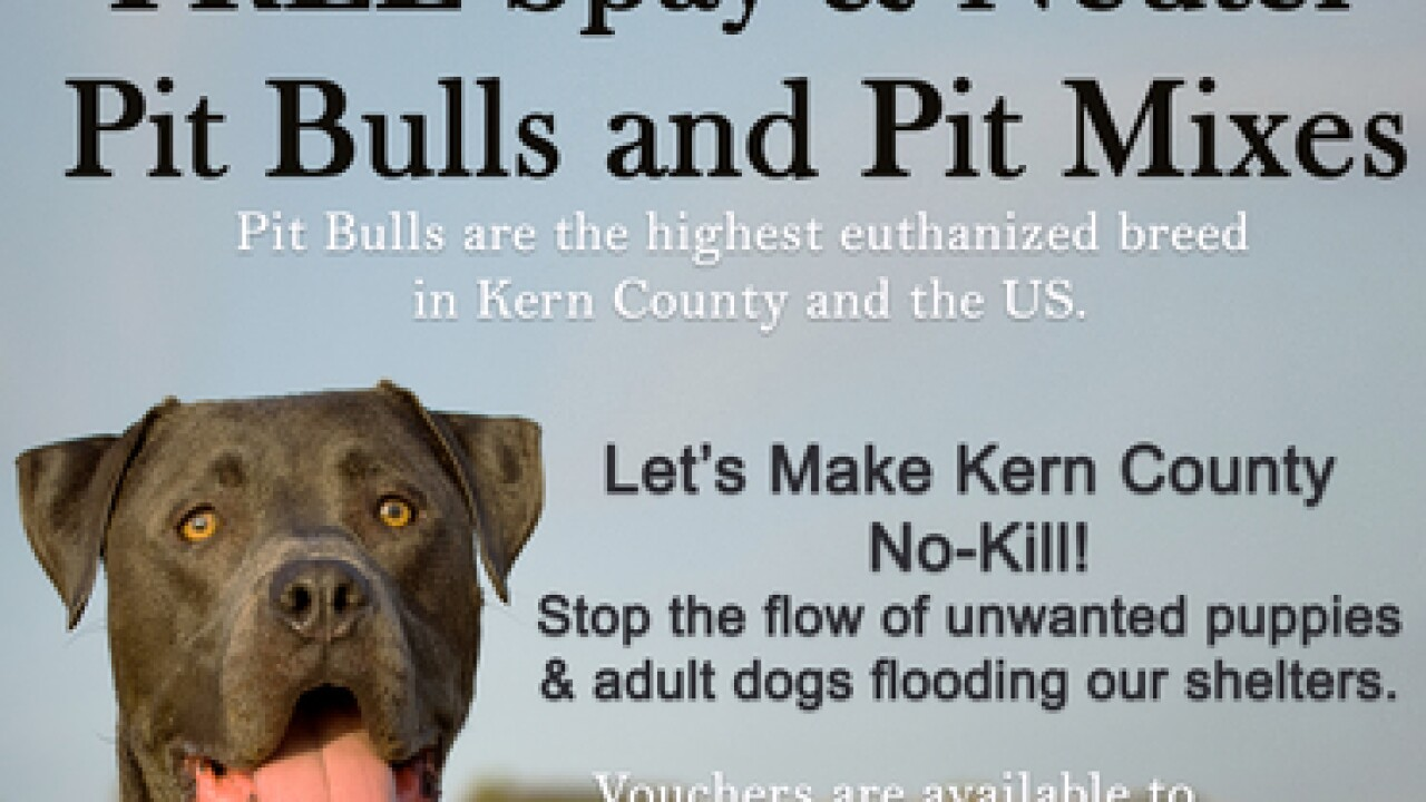 Organization Offers Free Spayneuter Vouchers To Pit Bull Owners