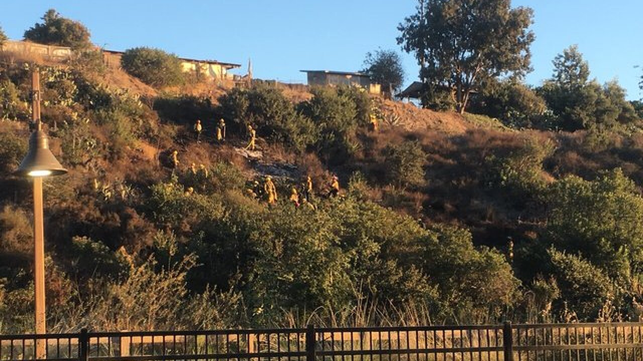SDFD fire crews dose brush fire behind homes