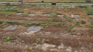 cd7 bad cemetery.png