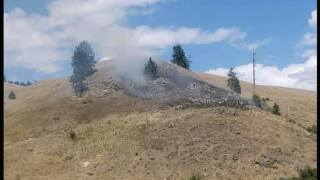 Grass fire caused due to bear climbing power pole