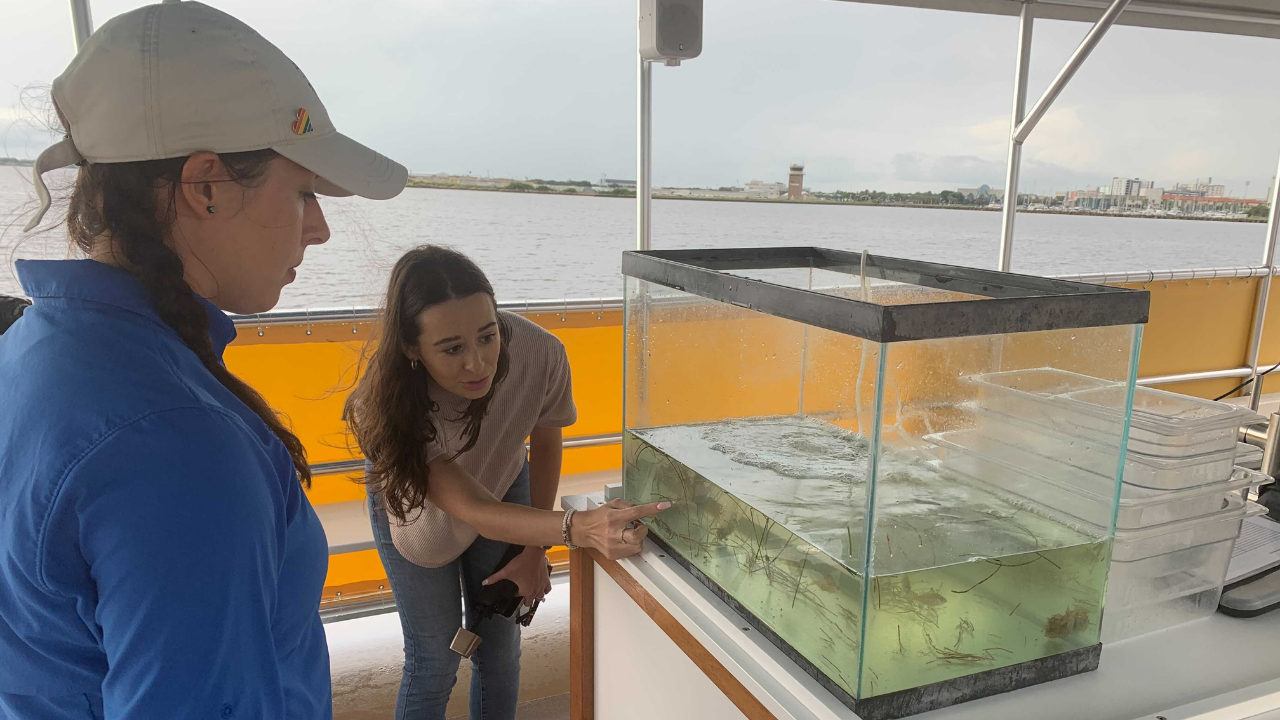 St. Pete Discovery Center Eco-Vessel tour2.png