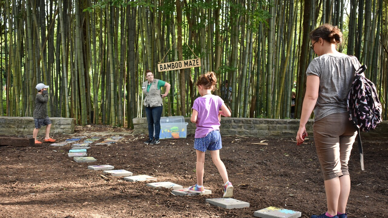 Virginia Zoo's new 'Nature Discovery Zone' playground opens