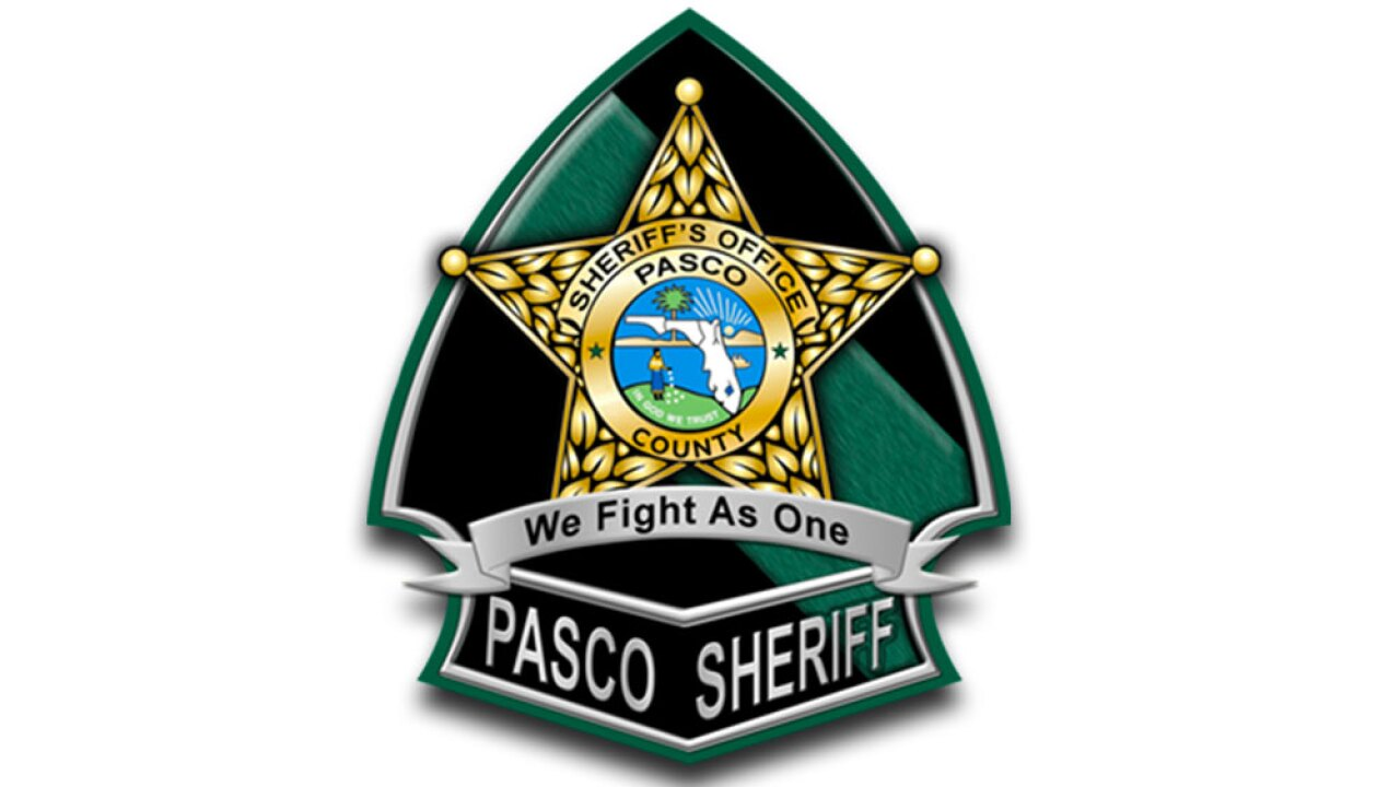 wptv-pasco-county-sheriffs-office-.jpg