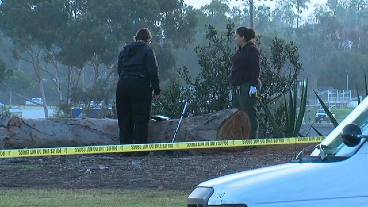 Body found in Balboa Park
