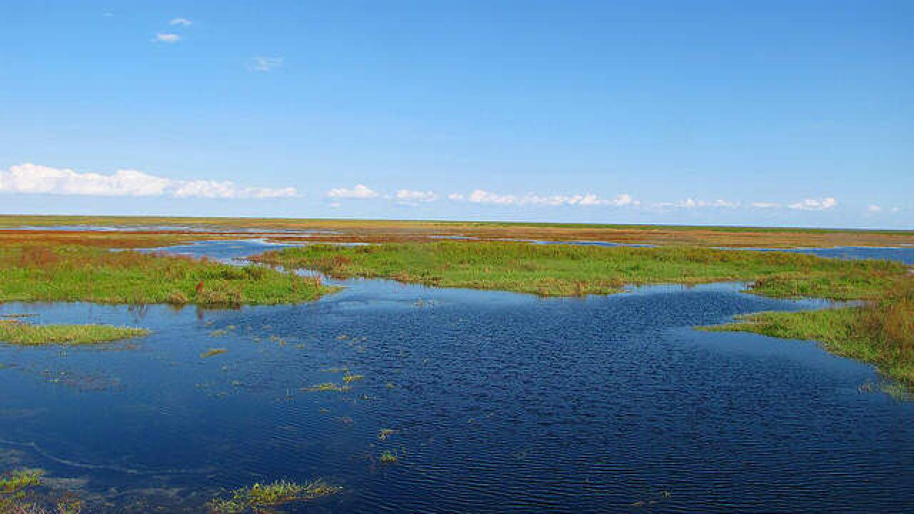 Concern over Lake Okeechobee back-pumping