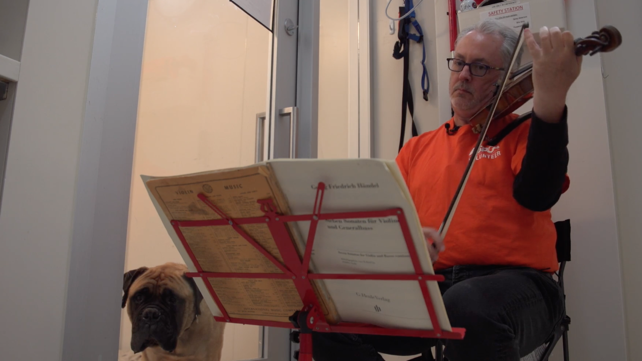 A Broadway violinist is bringing healing and hope to neglected shelter dogs by sharing his talent
