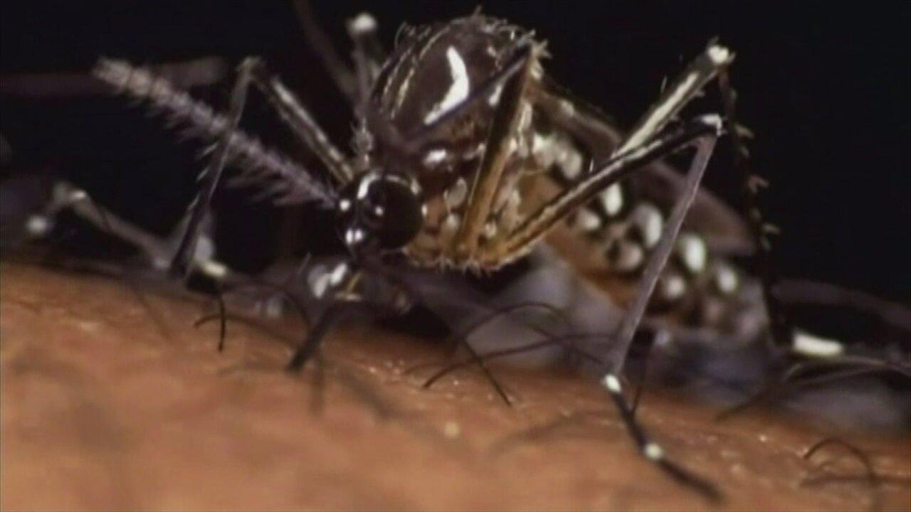 Utah resident with Zika virus dies, first Zika-related death inUS