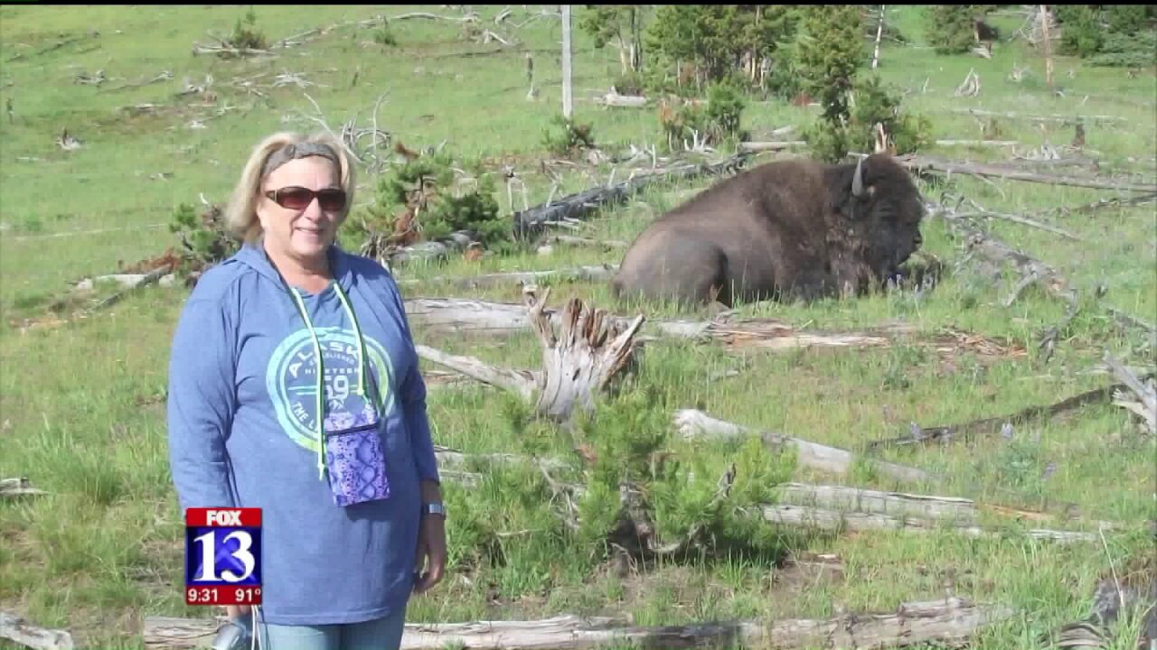 Utah couple injured by bison at Yellowstone National Park shares their story