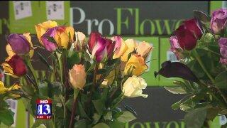 Booming Forward: Looking for love in Salt LakeCity