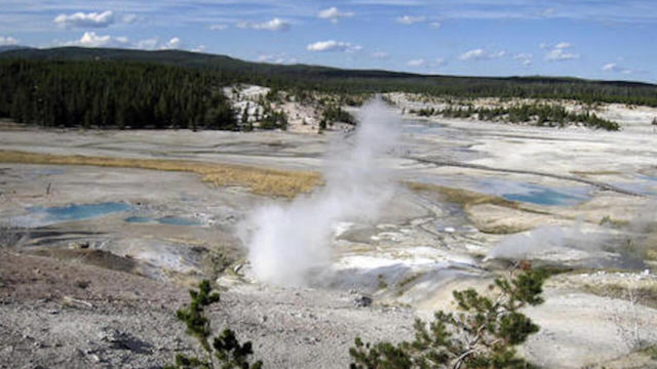 Man falls into hot spring at Yellowstone Park