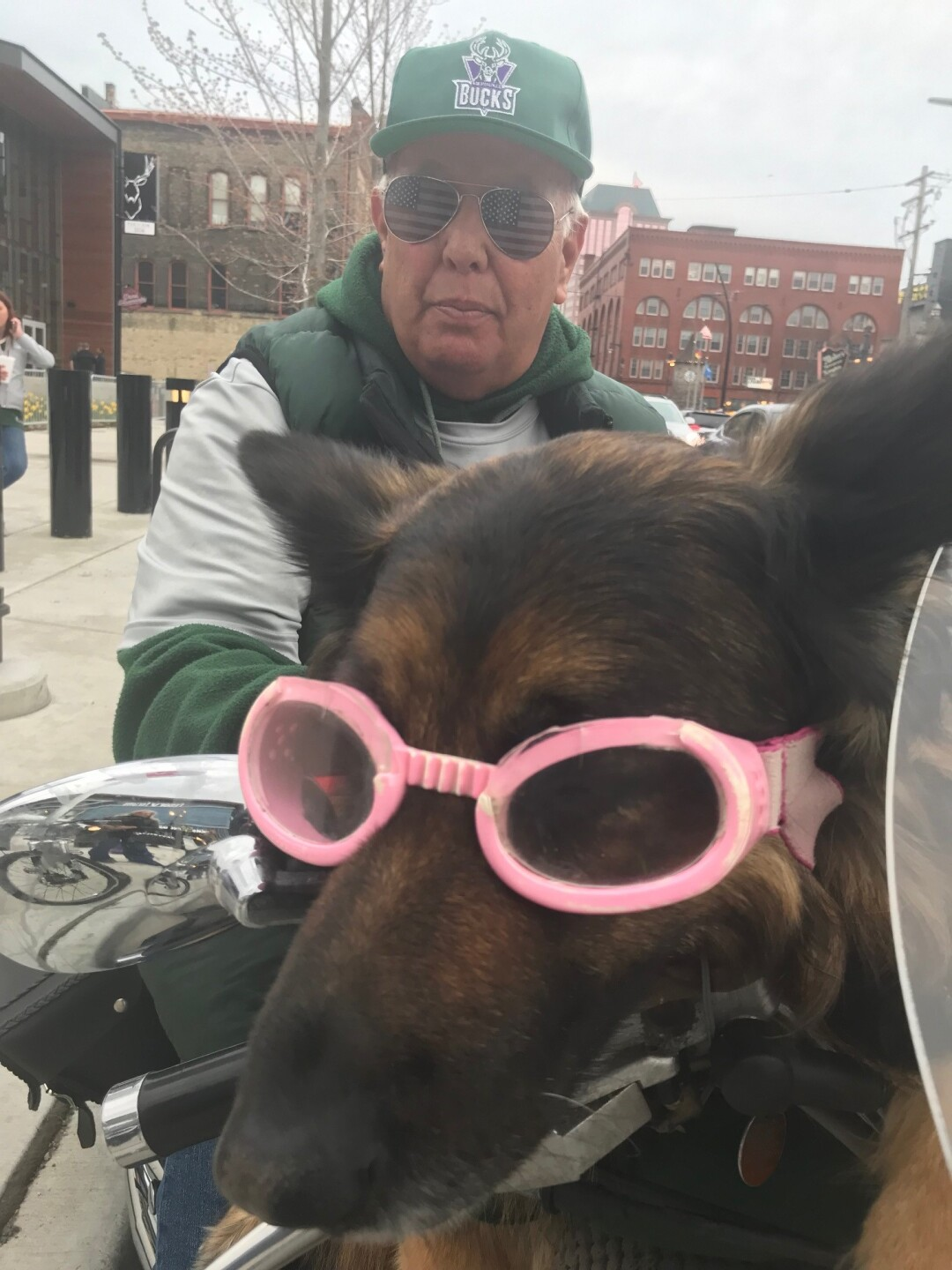 Molly the dog on a motorcylce by Fiserv Forum