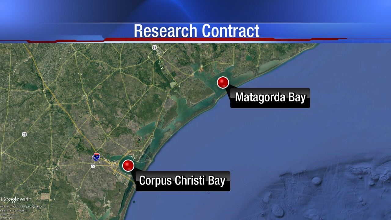 "TAMUCC researchers to embark on ""groundbreaking project"""