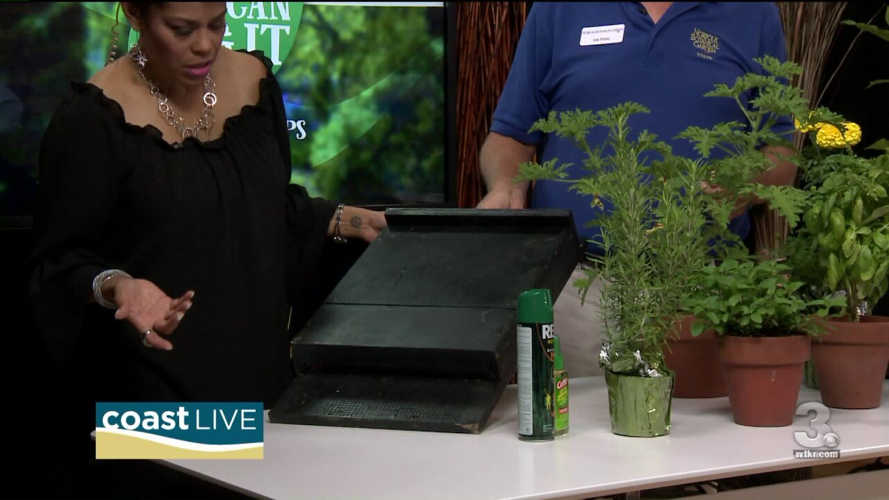 All-Natural Pest Control Tips on Coast Live