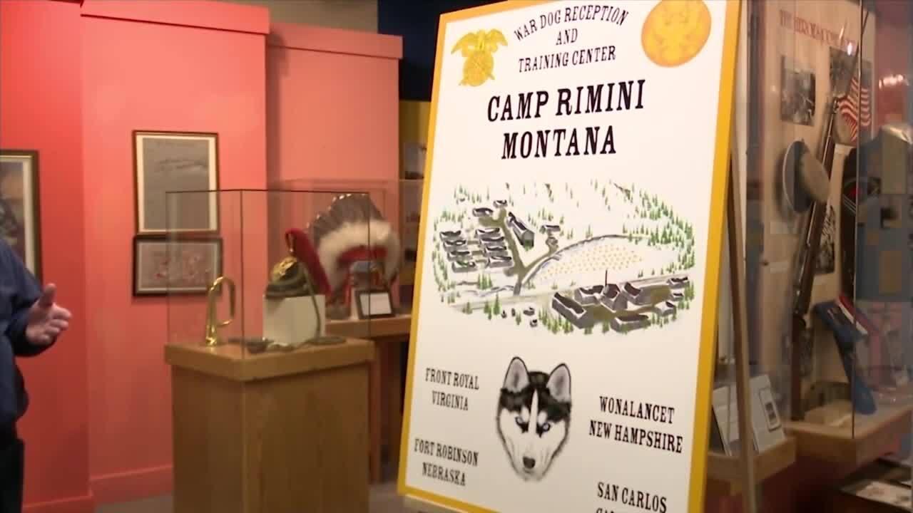 Camp Rimini poster