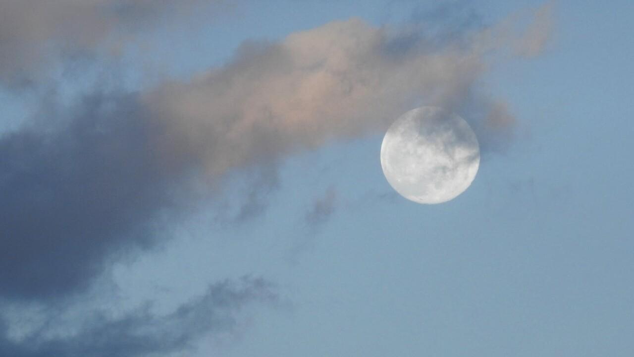 Carol McCallister Colorado Springs full moon