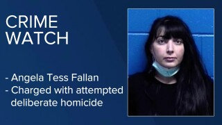 Angela Tess Fallan has been charged with attempted deliberate homicide in Missoula.